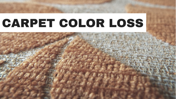 carpet-color-loss